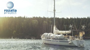 rozalia project to remove ocean trash