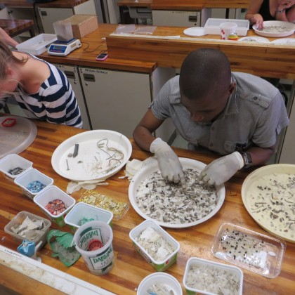 south africa coastal pellet watch program
