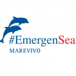 EmergenSea marine awareness